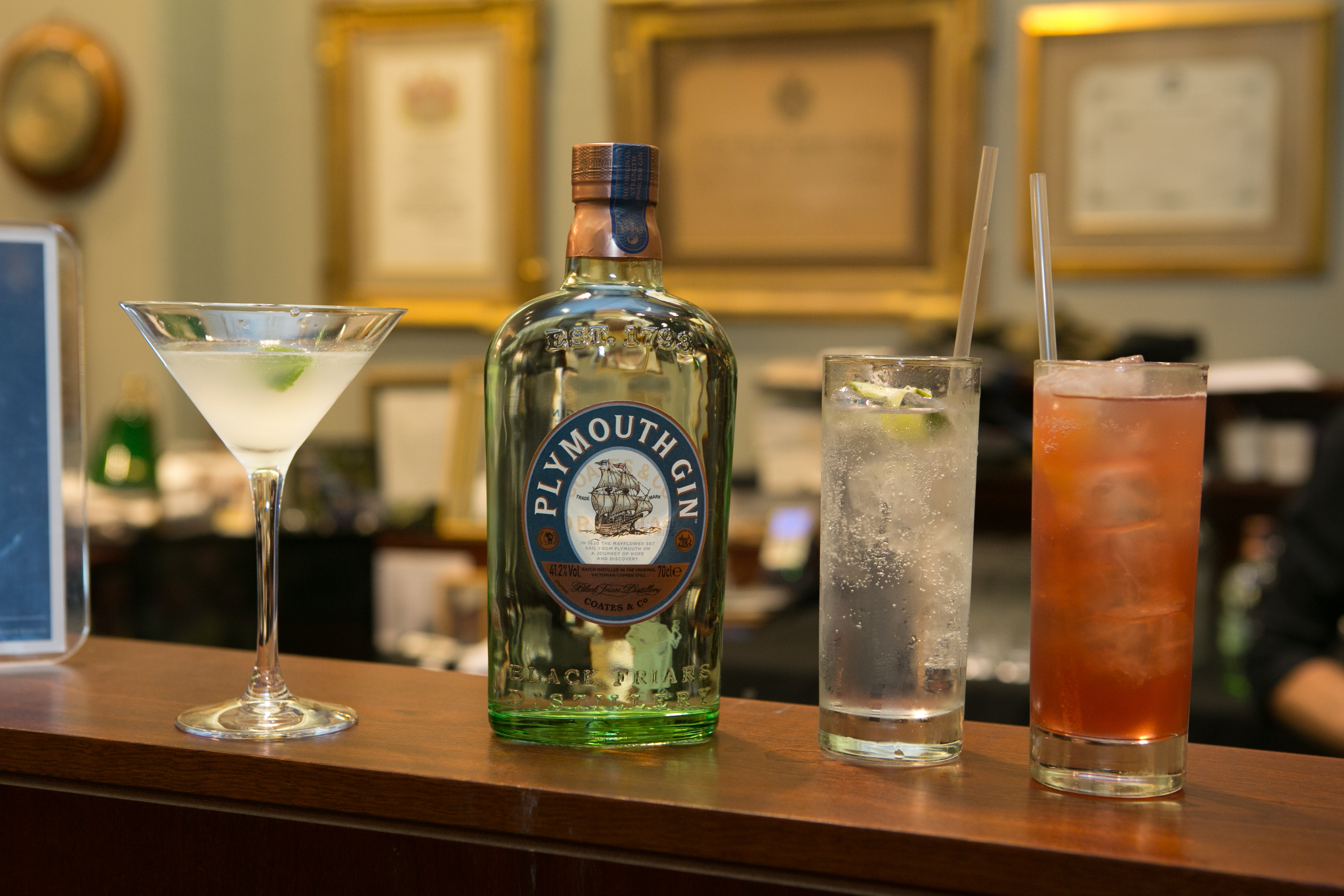 Archive opening with Plymouth Gin